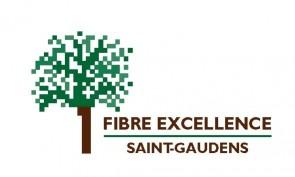 Case study: Fibre Excellence