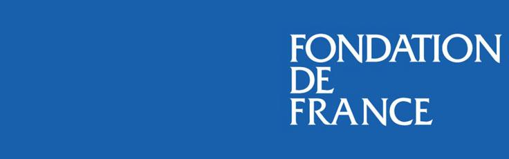 Case study: Fondation de France